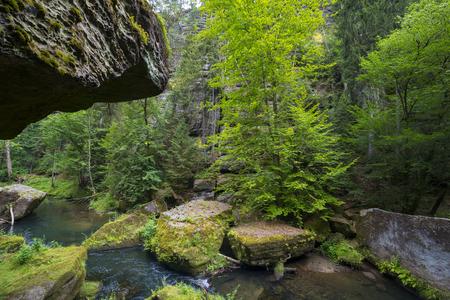 czech switzerland: national park, Czech Switzerland