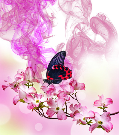 a tropical butterfly and flowers and floral aroma