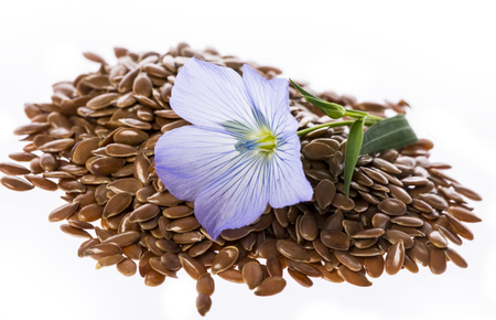 linseed: flax seed, linseed - isolated on a white background