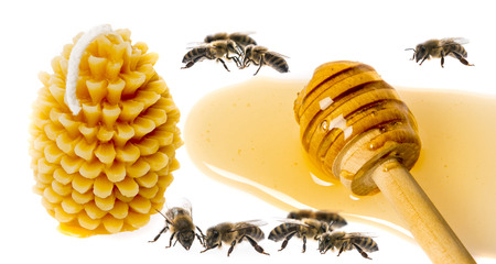 beeswax candle: Bees products - honey and Candle made of beeswax isolated on a white background
