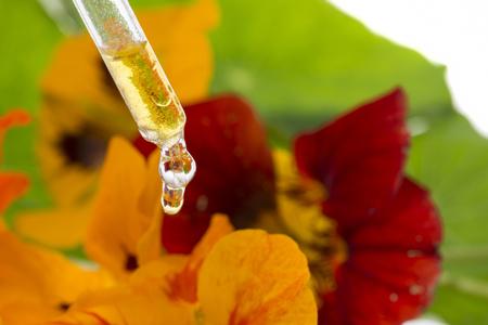 healthy extract from nasturtium flower (Tropaeolum)
