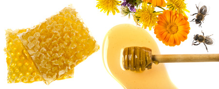 Honey dripping from flower honey dipper isolated on a white background