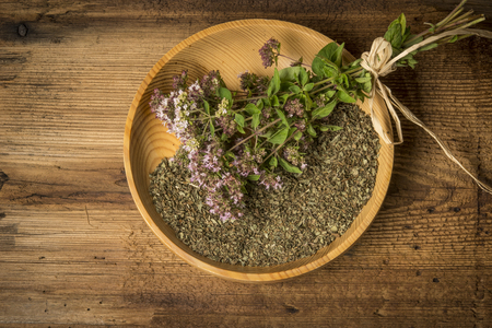 Origanum vulgare (oregano) herb - spice on a table