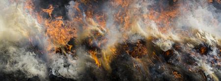 Fire - burning dry grass