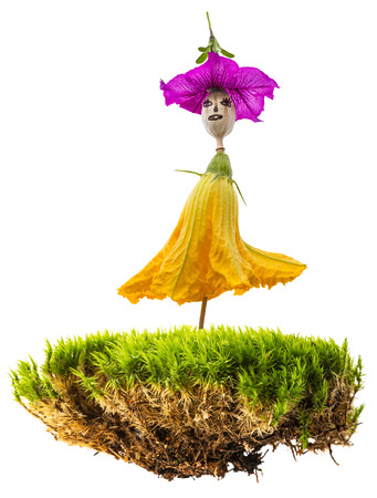 doll from plants on green moss isolated on a white background close up Reklamní fotografie