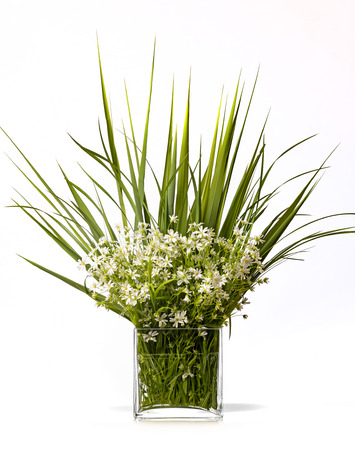 flower bouquet in a glass vase isolated on white background