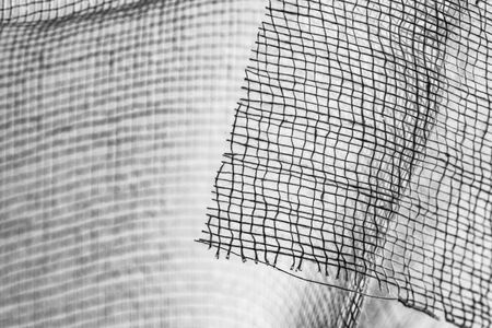 Cotton fibers texture in black and white - textured background