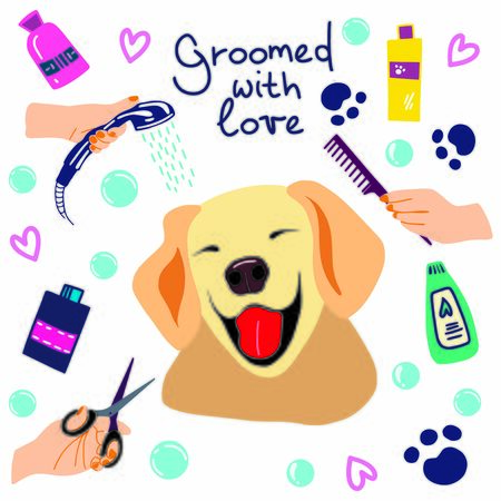 Vector illustration of cute dogs in the bath with foam and shampoos and handwritten phrase Groomed with love. Hand drawn pet care illustration