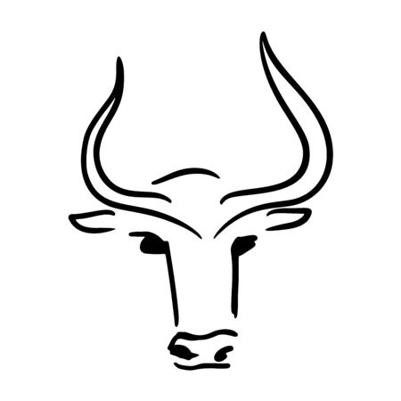 Abstract vector hand drawn image of a bull (cow). New year, farming, organic products. Banners, packaging design, greeting card