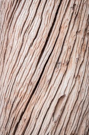 wood panel: background image old wood Stock Photo