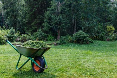 cut grass: Wheelbarrow with cut grass in the garden. a park. garden cart with one wheel Stock Photo