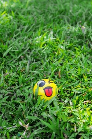 Small ball on green grass.