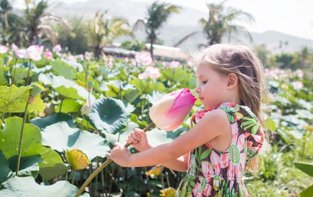 This beautiful waterlily or lotus flower. The girl hold in her hands a flower, sniff it and smile. Stockfoto