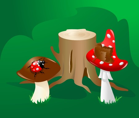 mushrooms and ladybird by stub Illustration