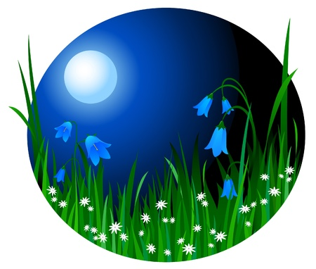 Night landscape with flowers and a grass on a background of the moon