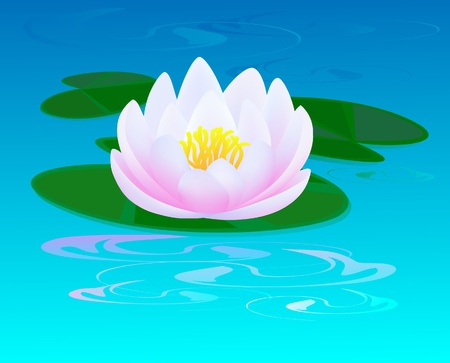Pond with a pink water lily and a ripples on water Illustration