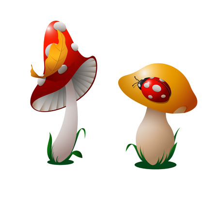 Red mushroom with a yellow leaf on a cap, and a yellow mushroom with a red ladybird on a cap. Illustration