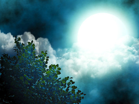Bright moon, illuminating the tree and the clouds.