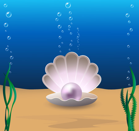 cockleshell: Marine cockleshell with a pearl on a sea-bottom Illustration