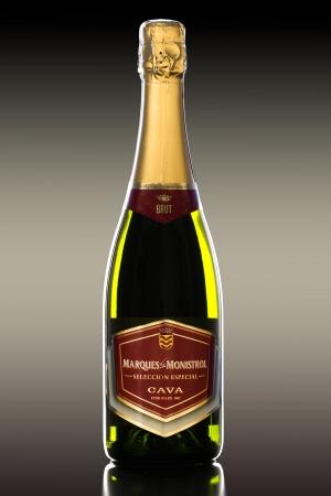cava: Bottle of Marques de Monistrol Cava Brut