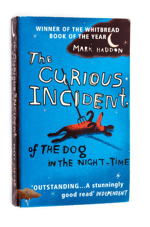 utilized: The curious incident of the dog in the night-time