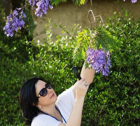 botanist: Botanist watching the purple flowers on the jacaranda tree with magnifying glass