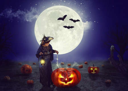An old fairy conjures on a pumpkin field at night. A huge moon behind her back. Silhouettes of three bats are visible in its background.
