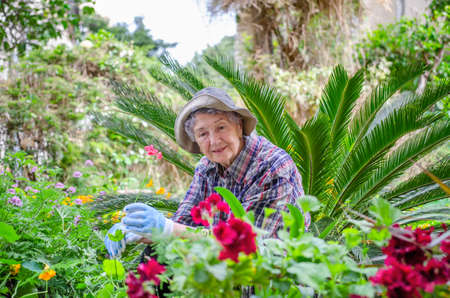 Elderly woman in a plaid shirt loves talking to plants in the backyard garden it gives her peace of mind, imagination, and pleasure.