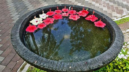 Stone bowl with water and a composition of decorative flowers. The heads of tropical hibiscus flowers with long pestles float in the water: red and two white. In brilliant water reflection of the sky and palm trees. Romance