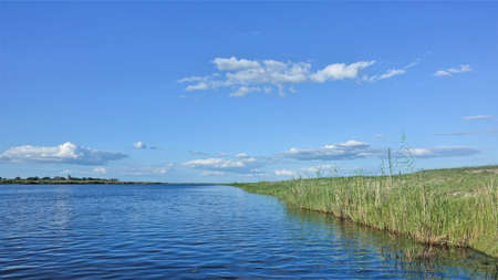 Peaceful landscape of Africa. Sunny summer day. The blue river flows quietly, green grass grows on the shore. Azure sky with picturesque clouds. Botswana, Chobe.