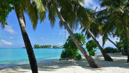 Maldives beach. White sand, palm trees leaned towards aquamarine water. In the shade, a swing hangs on the trunk of a palm tree. In the distance, against the azure sky, a small island, a pier, boats. Banque d'images