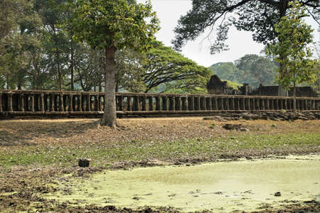 Cambodia. Angkor. An ancient stone footpath on supports leads to the temple. Nearby there are trees, a reservoir overgrown with duckweed.