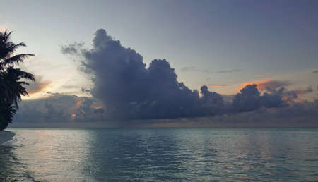 Evening in the Maldives. Dusk. Whimsical cumulus clouds of blue and pink. Reflection on the shiny surface of the turquoise ocean. Silhouettes of palm leaves against the sky. 스톡 콘텐츠