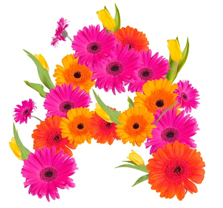 Een, bloem alfabet op wit wordt geïsoleerd Stockfoto
