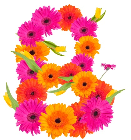 B, flower alphabet isolated on white  photo