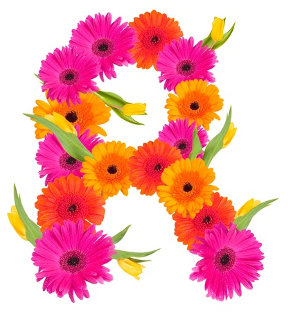 R flower alphabet isolated on white  photo