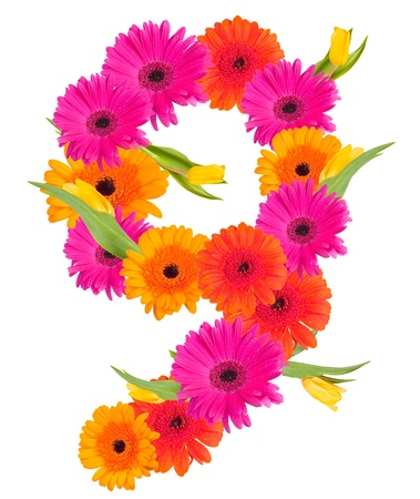 9 flower alphabet isolated on white  photo