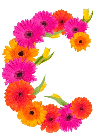 r image: c, alfabeto fiore isolato su bianco
