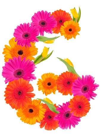 g,flower alphabet isolated on white  photo