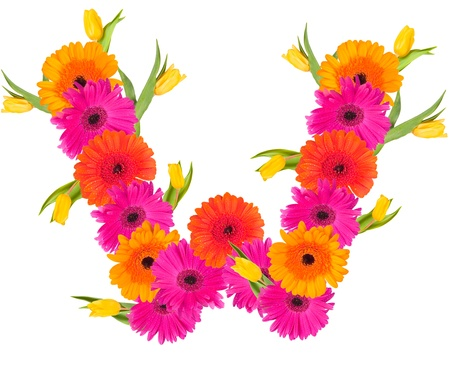 W, flower alphabet isolated on white  photo