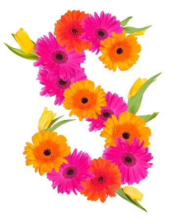 S flower alphabet isolated on white  photo