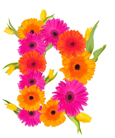 D flower alphabet isolated on white  Stock Photo - 19000942