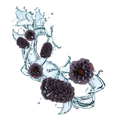 fresh blackberry in water splash photo