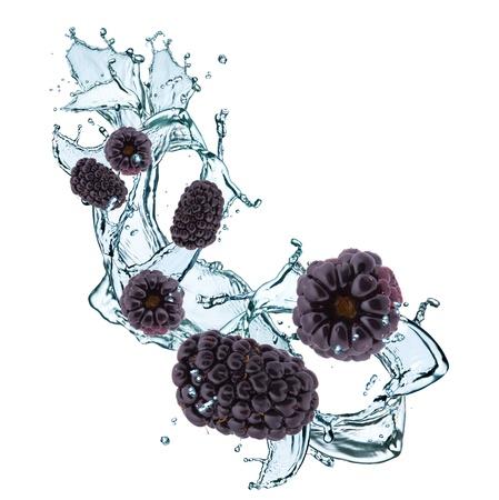 fresh blackberry in water splash Stock Photo