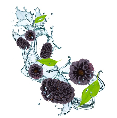fresh blackberry and leaf in water splash photo