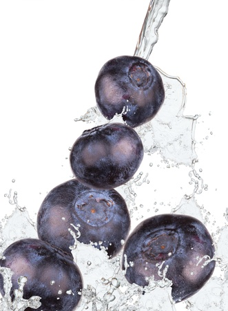 Blueberries with splash isolated on white