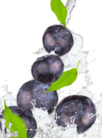Blueberries and leaf with splash isolated on white