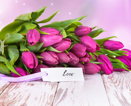 purple tulips on wood background photo