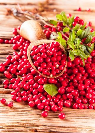 cranberry  Standard-Bild