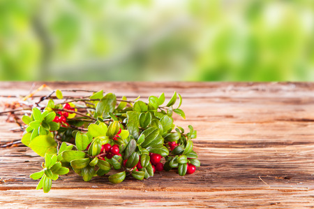 Cranberries on wooden table with nature green background